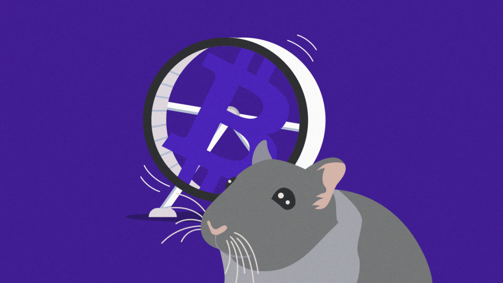 Looking for a ridiculously cute but totally random way of investing your cash? Meet Mr. Goxx, the world's first Twitch streaming, crypto trading hamster.